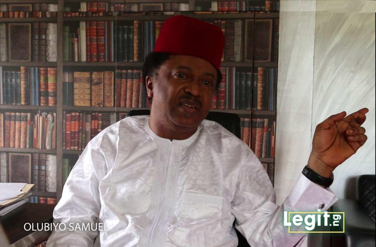 Foreign cars permitted, foreign rice disallowed - Shehu Sani slams FG, Senate