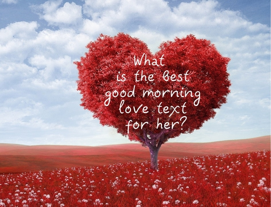 75 sweet and romantic good morning love text ideas for her