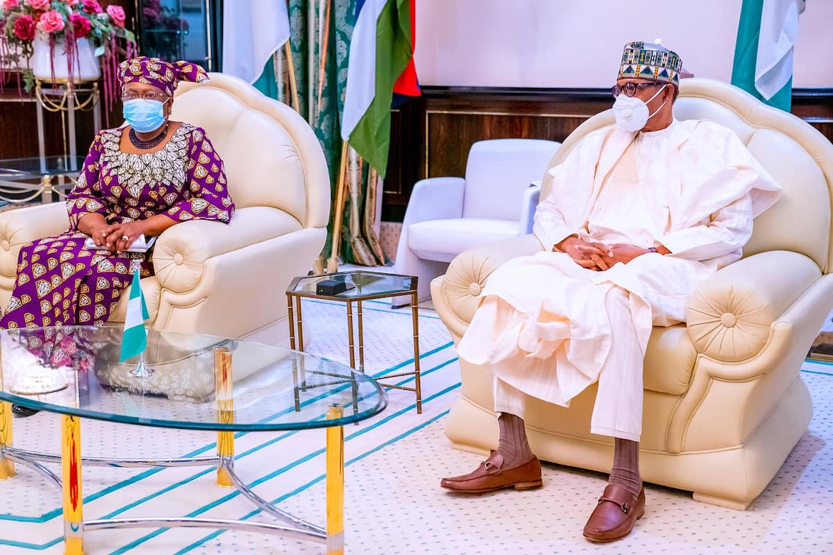Breaking: Okonjo-Iweala meets with Buhari, reveals how president  facilitated her emergence as WTO DG ▷ Nigeria news | Legit.ng