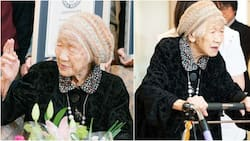 116-year-old Japanese woman confirmed as the oldest living person in the world by Guinness World Records (photos)