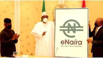 CBN laments as fake eNaira Twitter account deceives Nigerians with N50bn giveaway after Pres Buhari launch