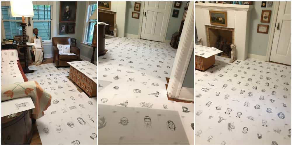 Man Makes 400 Drawings for Each Day he Didn't go out, 'Scatters' Room with it, Beautiful Photos Cause Stir