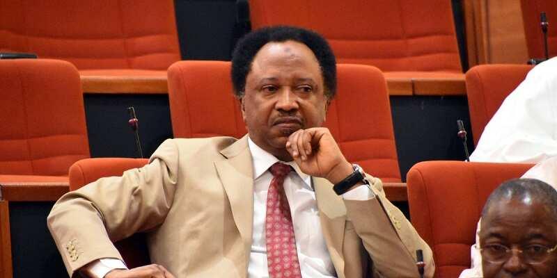 Hasashe: Gabarasa 4 da Shehu Sani kan iya samu ta dalilin komawa PDP