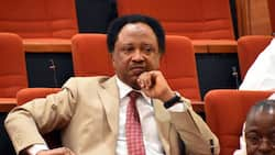 Why former senator fit save you - Shehu Sani shares experience with angry Nigerian youths
