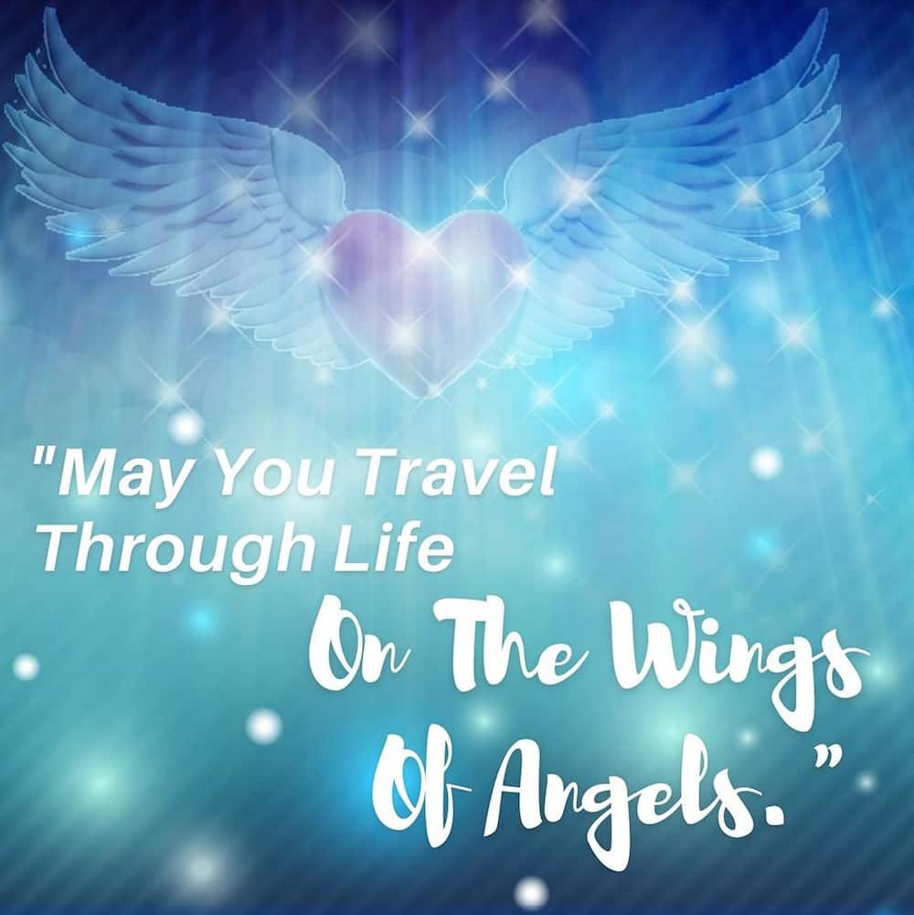 Angel wings quote