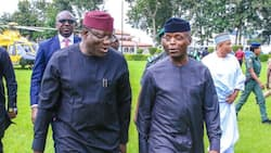We have a vice president who is a huge bridge builder, says Fayemi