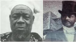 4 interesting facts about Bode Thomas, the Nigerian lawyer who reportedly barked to death