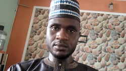 Open grazing should be banned all over Nigeria, says Hamzat