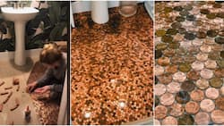 Woman spends 16 hours painstakingly gluing N31k worth of coins to her bathroom floor, shares cute video