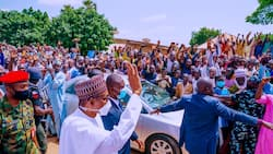 Breaking: Photos, video emerge as Buhari arrives in Kano for son's wedding