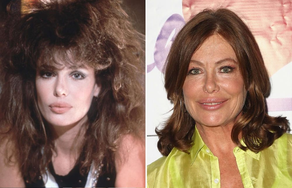 what does Kelly LeBrock look like now