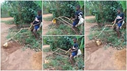 Talented boy uses sticks to build 'excavator', packs sand with it in viral video, Nigerians praise him