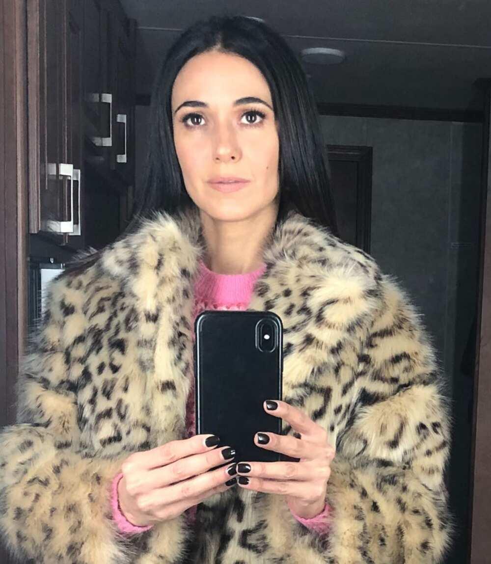 Emmanuelle Chriqui career