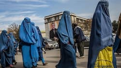 Taliban Takeover: Afghan women barred from doing jobs that men can do