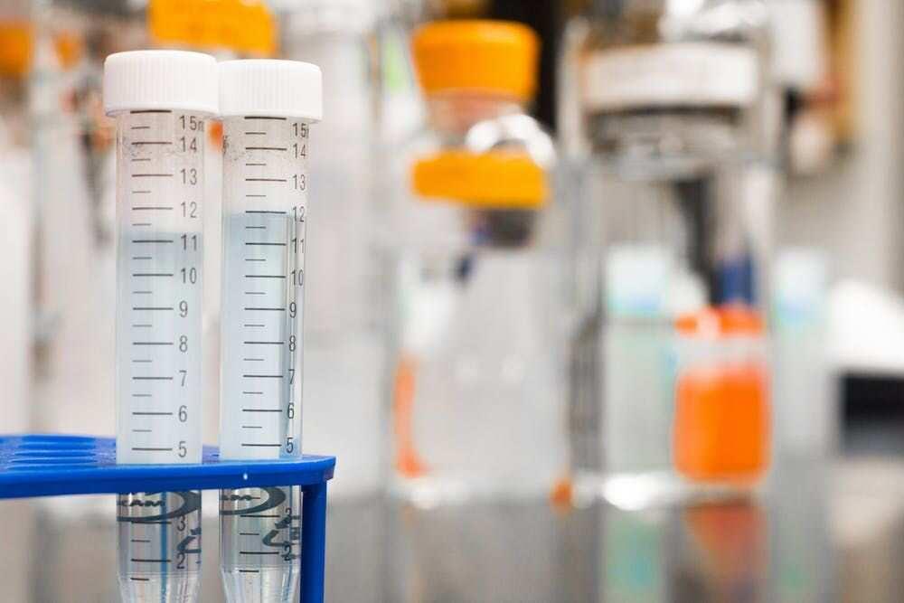 Common Laboratory Apparatus Names And Uses Legit Ng
