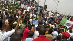 BREAKING: South-south youths shut NDDC office, barricade east-west road