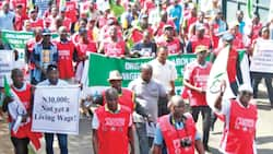 Minimum Wage: Labour promises tough time for dissenting governors