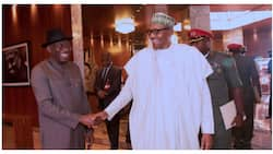 At last, Buhari's minister reveals truth about Jonathan, 2015 presidential election