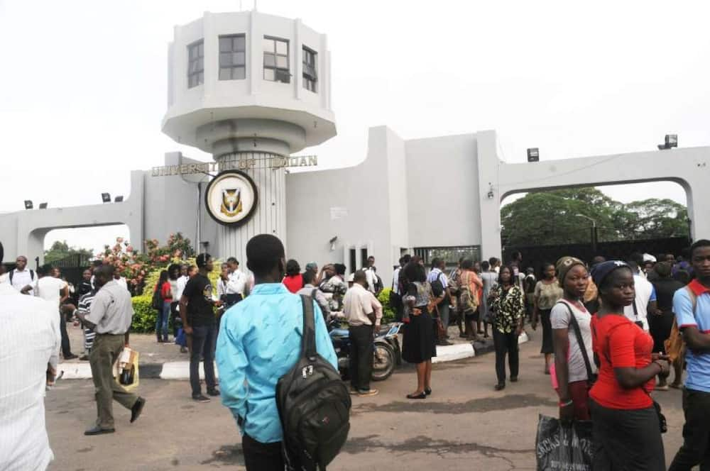 You can't sit on our matter, SSANU, NASU fault UI Senate over punishment threat