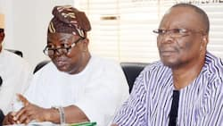 Breaking: Strike continues as ASUU insists FG must release at least N220bn spread over 4 quarters of 2019