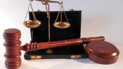 Top 20 universities to study Law in Nigeria