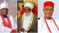 List: Ooni of Ife, Sultan of Sokoto appointed as Buhari names chancellors for 42 universities