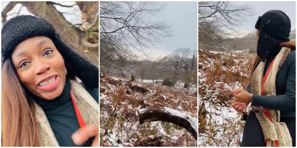 BBNaija's Khafi hilariously runs for dear life as she goes deer hunting in London