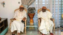 Why Fayemi was absent during visit to Tinubu's residence, Governor Akeredolu gives important reason