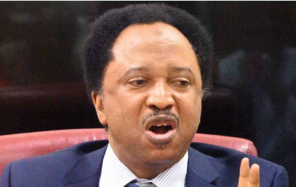 Labari Da Duminsa: Sanata Shehu Sani Ya Koma Jam'iyyar PDP