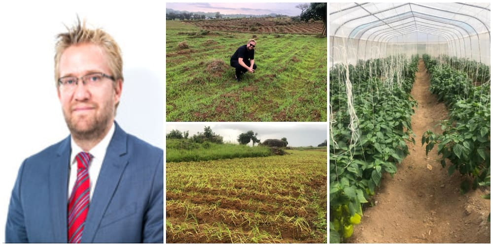 Oyinbo man causes stir as he announces becoming a farmer in Nigeria, shares photos of his farmlands