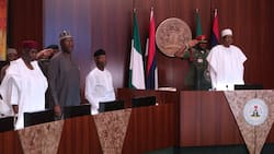 Ex-police boss Tsav gives Buhari best strategy to monitor his incoming ministers against corruption