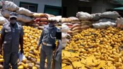 Customs intercepts, seizes suspected hard drug worth N1bn in Lagos (photo)