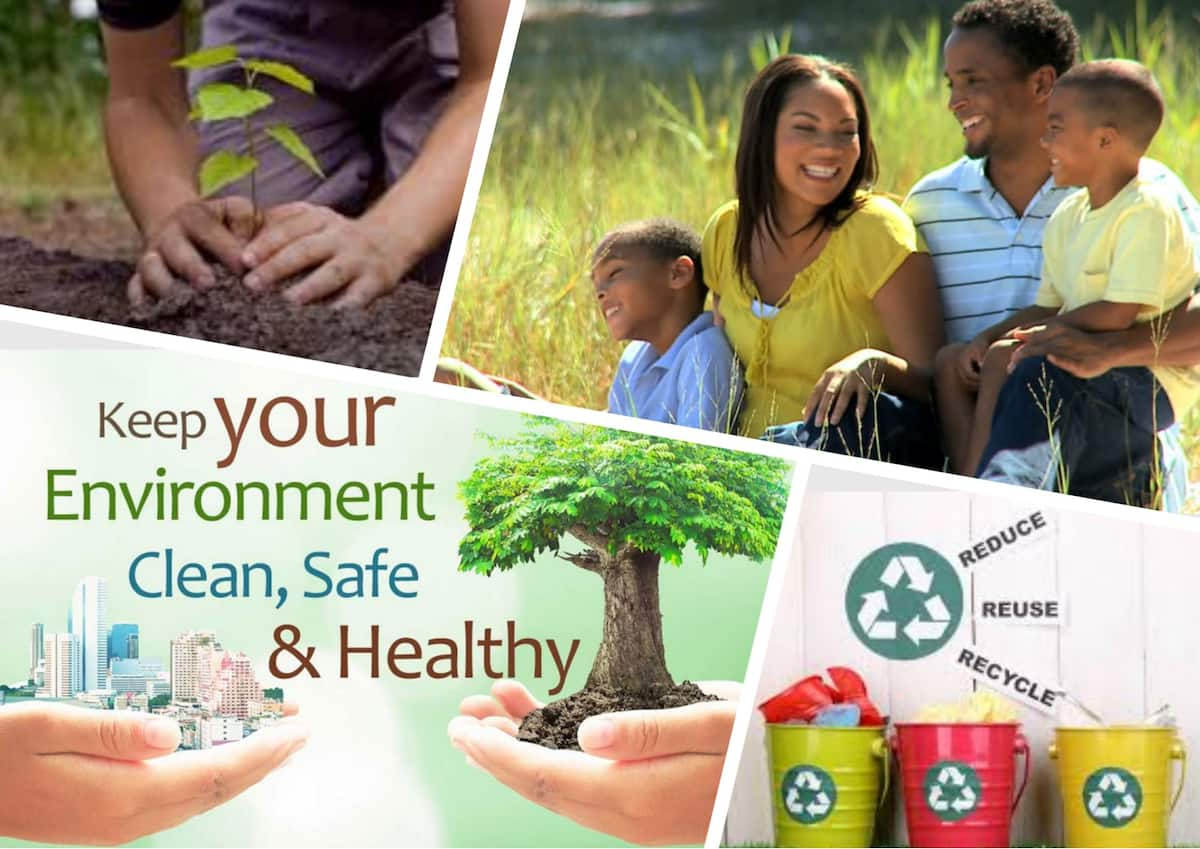 Environmental Problems and Solutions in Nigeria