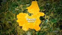 Boko Haram fighters entering Bauchi from Yobe, government cries out