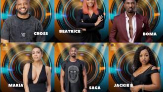 BBNaija housemates 2021: who are the season 6 contestants?