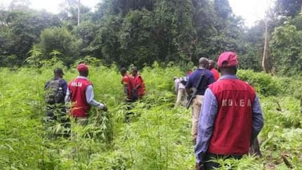 2 suspected drug dealers drown in River Niger while trying to evade NDLEA arrest