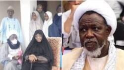 Free El-Zakzaky too - Falana reacts to release of Sowore, Dasuki