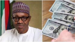 Rising dollar rate: Four ways it affect every Nigerian as CBN battles Bureau De Change operators