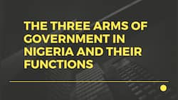 The three arms of government in Nigeria and their functions