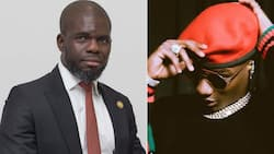 Nigerian man criticises Wizkid for coming late to his own show, says the singer lacks discipline