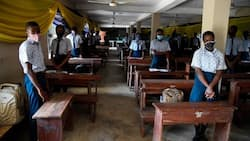 WASSCE 2021: WAEC reveals when results will be available
