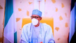 Ohanaeze Ndigbo reacts to attempted robbery attack near Presidential Villa, sends message to Buhari