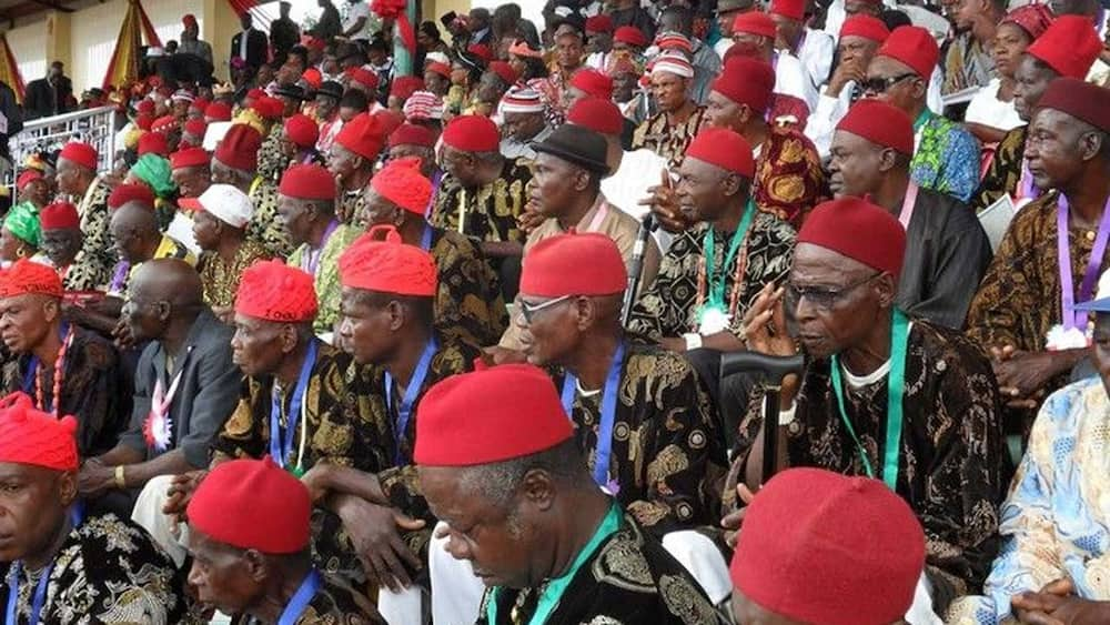 APC leader says only unity will produce Igbo president in 2023