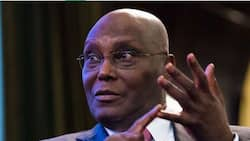 Restructuring: This is what will happen to Nigeria - Atiku issues warning again
