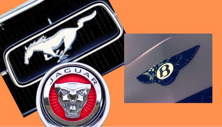 Expensive Car Logos 2019 Legit Ng