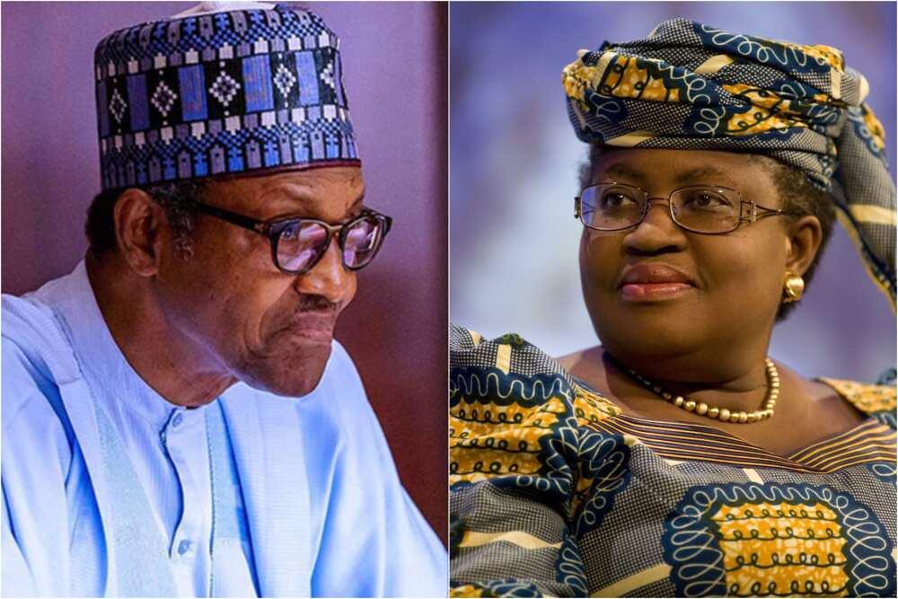 WTO: Buhari makes finally position on Okonjo-Iweala's aspiration