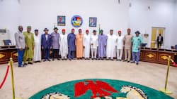 Open grazing ban: Southern Governors Forum replies presidency