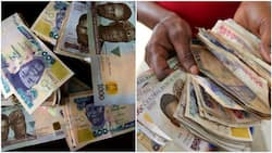 5 sure ways to spot fake naira notes, number 2 is easy
