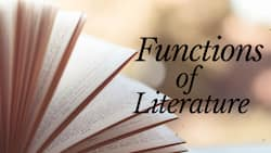 Top 10 functions of literature you need to know