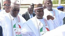 2023: Northern presidential hopefuls edging southerners in online engagement
